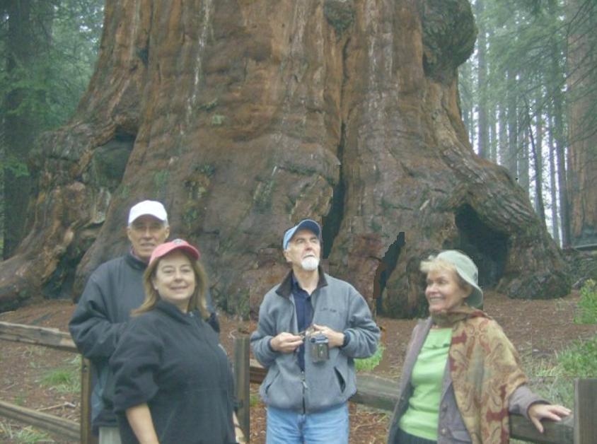 Jerry-Ileana-Ion-Lidia-SequoiaParkMai2008